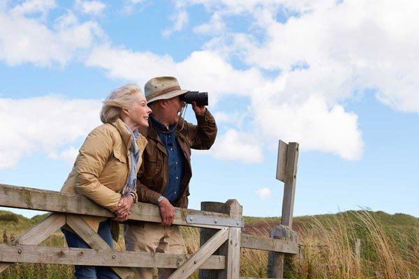 Bird Watching NL | The Wilds